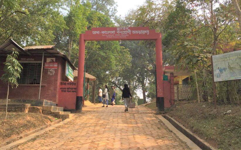 অরণ্য গাহন: চুনারুঘাটের রেমা-কালেঙ্গায়