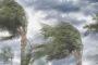 ভারতে করোনায় ২৪ ঘণ্টায় মৃত্যু ৭৮০, রেকর্ড শনাক্ত ১,৩১,৯৬৮ জন